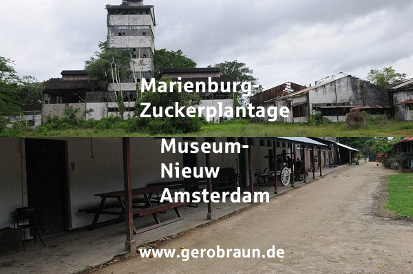 Marienburg-Nieuw Amsterdam
